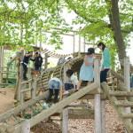 【写真】中央公園のアスレチック。子どもたちが楽しそうに遊んでいる。